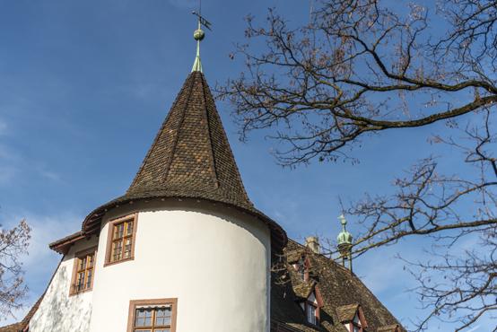 Schloss_Binningen.jpg