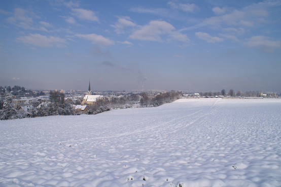 Winter in Binningen