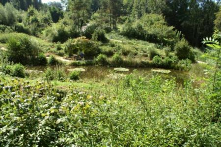 la réserve naturelle de Herzogenmatt
