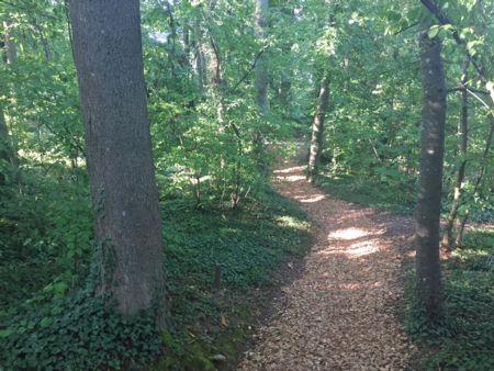Finnenbahn natural running track